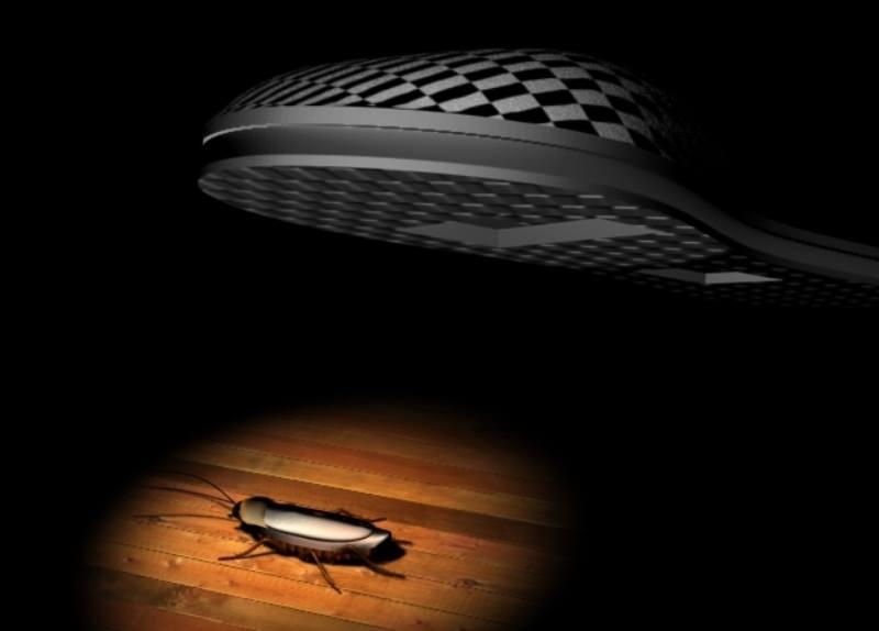 Сонник раздавить таракана