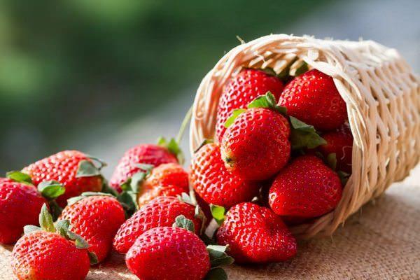Видеть во сне крупные ягоды фото