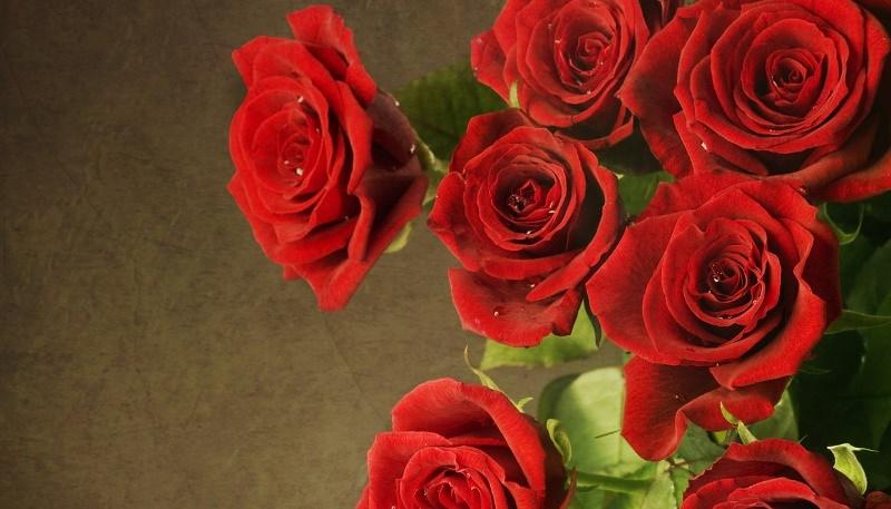 Во сне увидеть красные розы