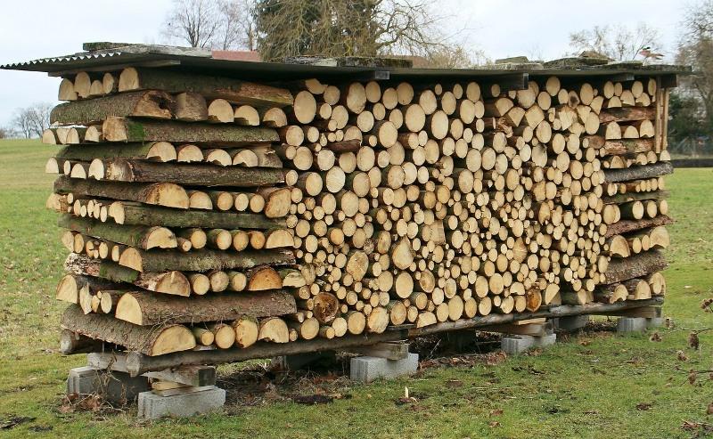 Толкователь сонника: к чему снятся дрова?