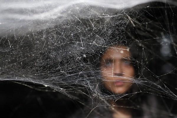 К чему снится паутина: счастье или горе?