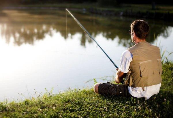 К чему снится рыба мужчине: толкования и пророчества