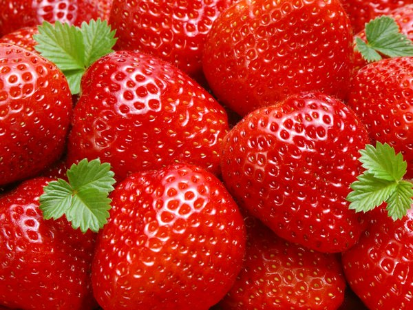 сонник виктория ягода