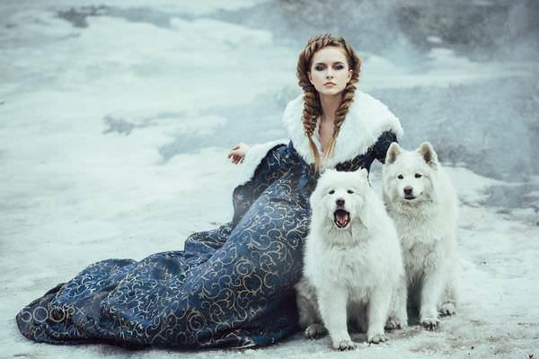 К чему снится белая собака: особенности толкования сновидения