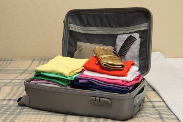 Паковать чемоданы дельфин где купить дорожные чемоданы в спб