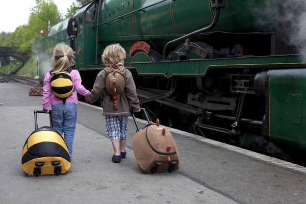 К чему снится чемодан: грядет поездка?