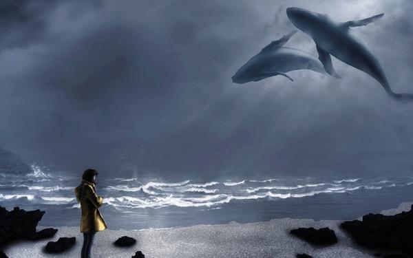 К чему снится кит: значения и толкования