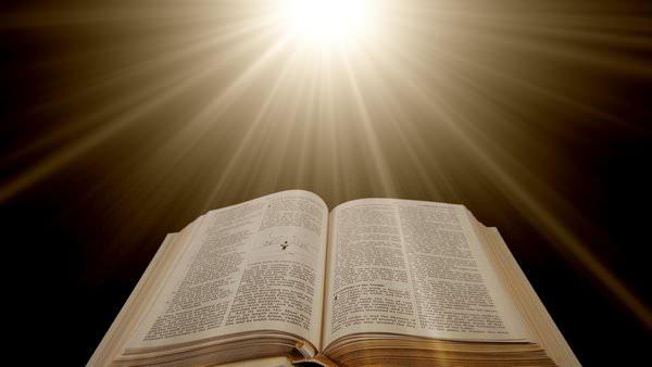 К чему снятся книги: сновидец резко поумнеет?