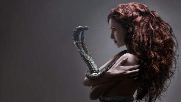 К чему снится кобра и стоит ли бояться такого образа во сне