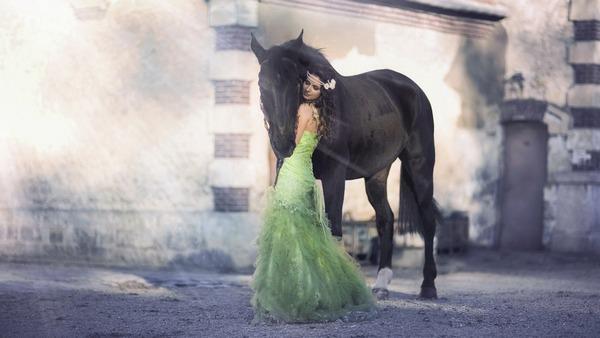 К чему снится конь: значения в сонниках