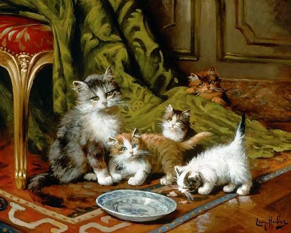 Приснился кот кошка и котята
