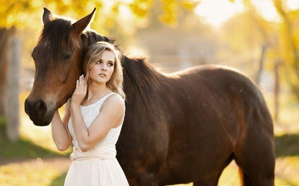 К чему снятся лошади во сне мужчине
