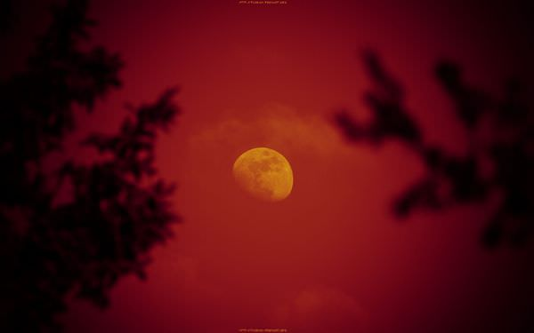 К чему снится луна: к худу или добру?