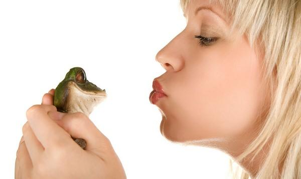 К чему снятся лягушки и стоит ли с ними целоваться