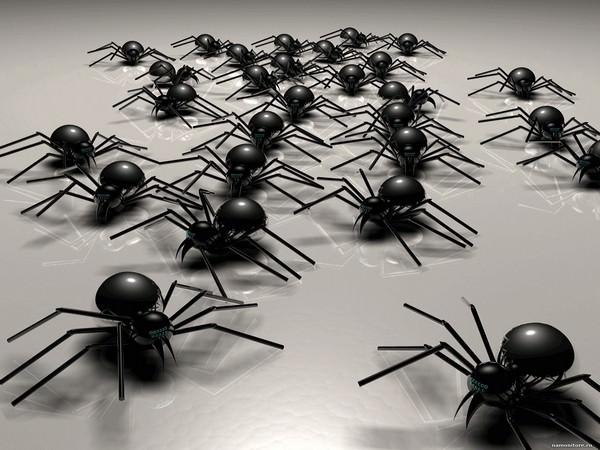 К чему снится много пауков и стоит ли пугаться таких грез?