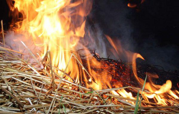 Картинки по запросу горит сено