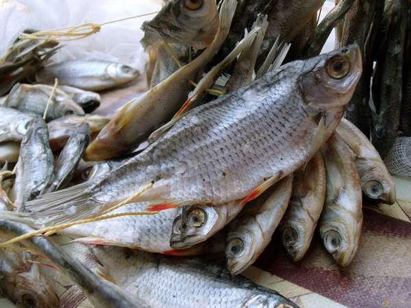 К чему снится сушеная соленая рыба женщине фото