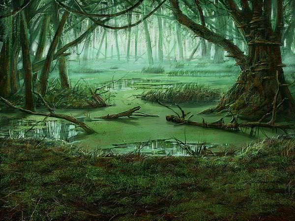 К чему снится болото: подробное толкование