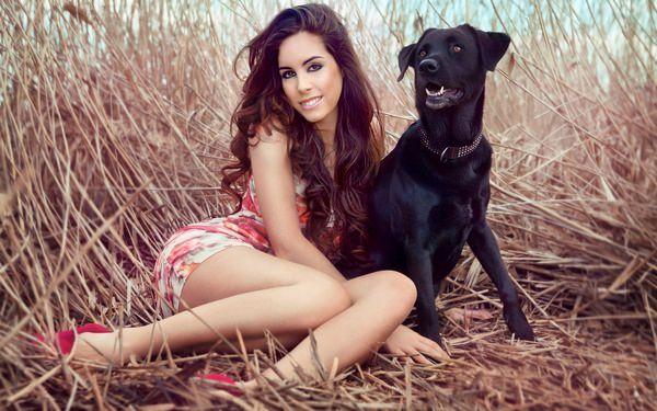 К чему снится черная собака: грозный знак или дивное предзнаменование?